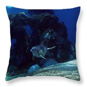 Dolphin Throw Pillow