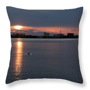 Dolphin At Dark Throw Pillow