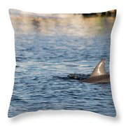 Dolphin By The Dock Throw Pillow