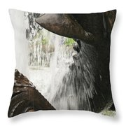 Dolphin Fountain 2 Throw Pillow