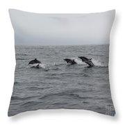 Dolphin Joy 2 Throw Pillow