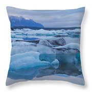 Dolphin Nose Throw Pillow