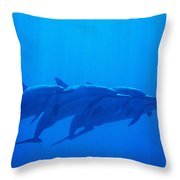 Dolphin Pod Throw Pillow