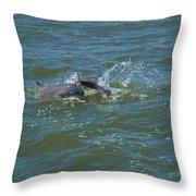 Dolphin Race Throw Pillow