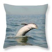 Dolphin Splash Throw Pillow