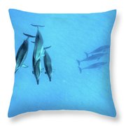 Dolphins At Rest Throw Pillow