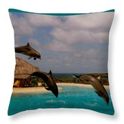 Dolphins Fly Throw Pillow
