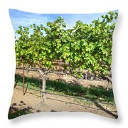 Domaine Chandon Panorama Throw Pillow