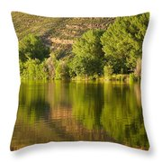 Dome Lake Sunset Throw Pillow