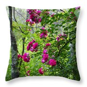 Domestic Rose Gone Wild Throw Pillow