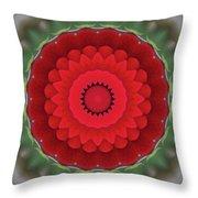 Don Juan Kaleidoscope Carnation Throw Pillow