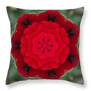 Don Juan Rose Poppies Kaleidoscope Throw Pillow