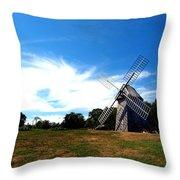 Don Quiotes Dragon  Throw Pillow