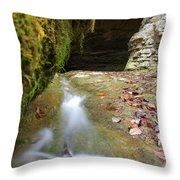 Donaldson Cave Throw Pillow