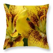 Done And Dusted Throw Pillow