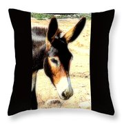 A Donkey Doesn't Need A Rider To Be Happy   Throw Pillow