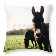 Donkey And Pony Throw Pillow