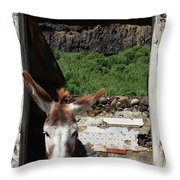 Donkey At The Window Throw Pillow