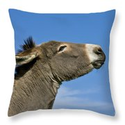 Donkey Demanding A Treat Throw Pillow