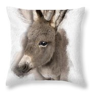 Donkey Foal No 02 Throw Pillow