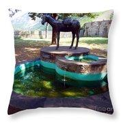 Donkey Fountain Throw Pillow