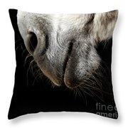 Donkey's Mouth Throw Pillow