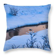 Donnelly Creek In Winter Throw Pillow