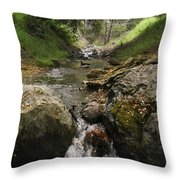 Donner Creek Throw Pillow