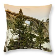 Donner Throw Pillow