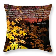 Don't Be Afraid Throw Pillow