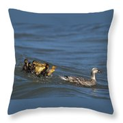 Don't Bother Mother Throw Pillow