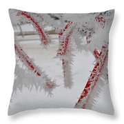 Don't Break My Heart-unique And Rare Formation Of Spiked Snow Icicles  Throw Pillow