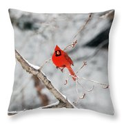 Don't Chirp With Your Mouth Full Throw Pillow