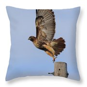 Don't Look Down Throw Pillow