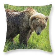 Don't Mess With Mama Bear Throw Pillow by Belinda Greb