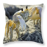 Don't Mess With The Crab Throw Pillow