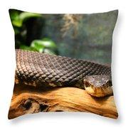 Don't Move Throw Pillow