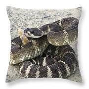 Don't Step On Me Throw Pillow