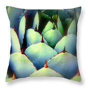 Dont Touch Me Throw Pillow