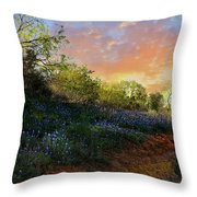 Donup Road Throw Pillow