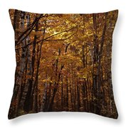 Door County No. 1 Throw Pillow