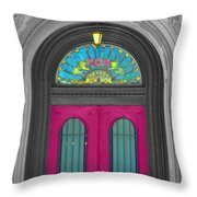 Door Fushia Throw Pillow