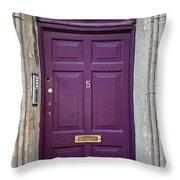 Door In Ireland 2 Throw Pillow