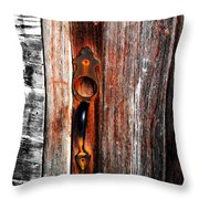 Door To The Past Throw Pillow