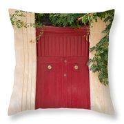 Doors Of The World 79 Throw Pillow
