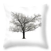Dormant Throw Pillow