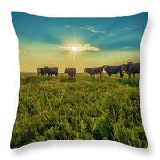 Dornodo Steppe Mongolia Throw Pillow