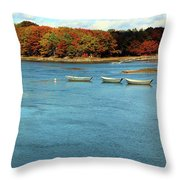 Dorys Throw Pillow