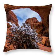 Double Arch Winter Throw Pillow