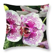 Double Beauty Throw Pillow